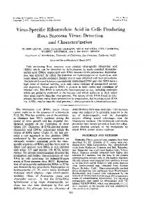 and Characterization - Journal of Virology