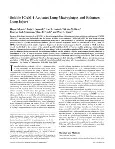 and Enhances Lung Injury Soluble ICAM-1 Activates Lung Macrophages