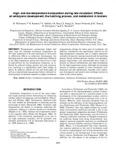 and low-temperature manipulation during late incubation: Effects on ...