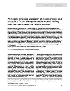 Androgens influence expression of matrix proteins and ... - Nature