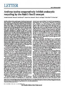 Anthrax toxins cooperatively inhibit endocytic recycling by ... - Nizet Lab