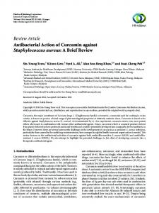 Antibacterial Action of Curcumin against Staphylococcus aureus: A ...