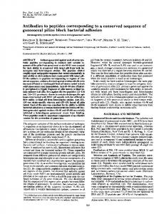Antibodies to peptides corresponding to a conserved sequence of ...