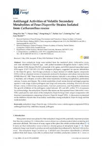 Antifungal Activities of Volatile Secondary Metabolites of Four ... - MDPI