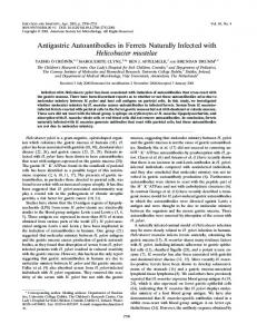 Antigastric Autoantibodies in Ferrets Naturally Infected with ...
