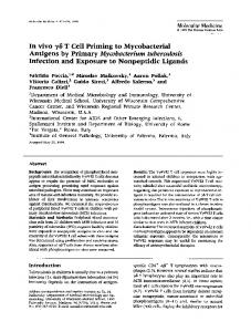 Antigens by Primary Mycobacterium tuberculosis - Europe PMC