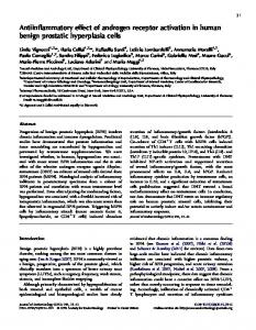 Antiinflammatory effect of androgen receptor activation in human ...