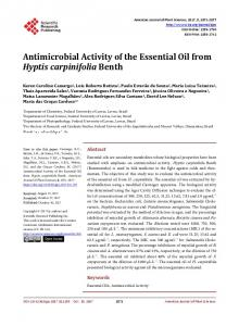 Antimicrobial Activity of the Essential Oil from Hyptis carpinifolia Benth
