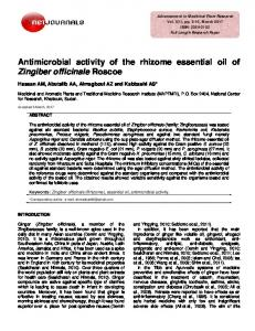 Antimicrobial activity of the rhizome essential oil of ...