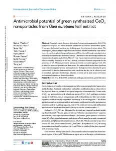 antimicrobial potential of green synthesized ceO ...