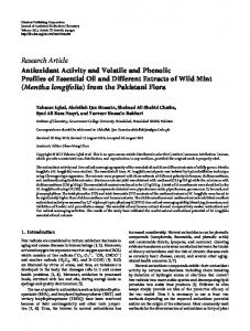 Antioxidant Activity and Volatile and Phenolic Profiles of Essential Oil