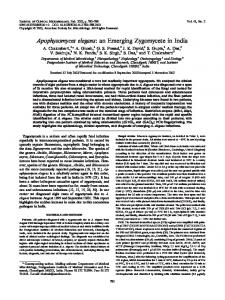 Apophysomyces elegans - Journal of Clinical Microbiology - American ...