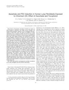 Apoptosis and P53 Induction in Human Lung Fibroblasts Exposed to ...
