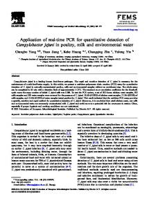 Application of real-time PCR for quantitative detection of ...