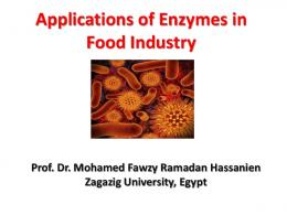Applications Of Enzymes in Food Industry