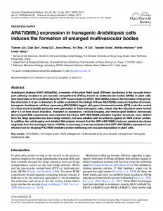 ARA7(Q69L) expression in transgenic Arabidopsis cells induces the ...