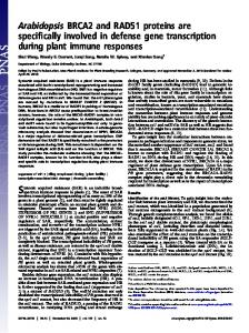 Arabidopsis BRCA2 and RAD51 proteins are specifically involved in ...