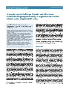 Arbuscular mycorrhizal fungal diversity, root colonization, and soil ...
