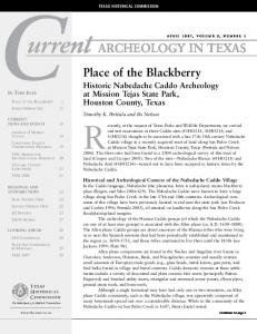 archeology in texas - Texas Historical Commission