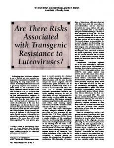 Are There Risks Associated with Transgenic ... - APS Journals