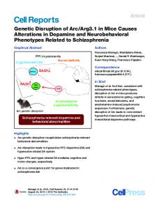 Arg3.1 in Mice Causes ... - Cell Press