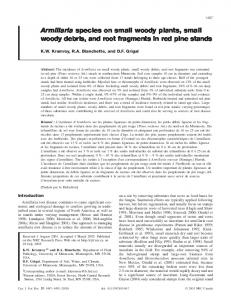 Armillaria species on small woody plants, small woody debris, and