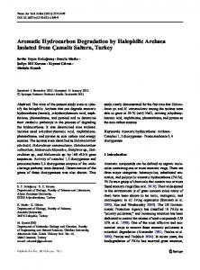Aromatic Hydrocarbon Degradation by Halophilic ...