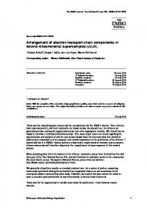 Arrangement of electron transport chain components ... - BioMedSearch
