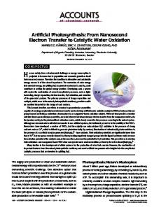 Artificial Photosynthesis: From Nanosecond Electron Transfer to ...