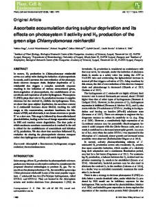Ascorbate accumulation during sulphur ... - Wiley Online Library