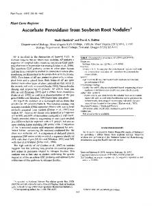 Ascorbate Peroxidase from Soybean Root Nodules - NCBI