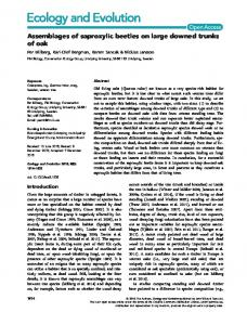 Assemblages of saproxylic beetles on large ... - Wiley Online Library