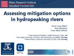 Assessing mitigation options in hydropeaking rivers