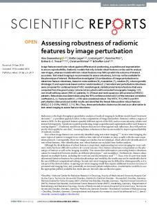 Assessing robustness of radiomic features by image