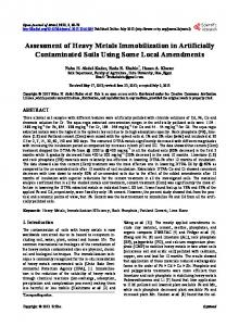 Assessment of Heavy Metals Immobilization in Artificially ...
