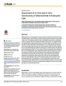 Assessment of In Vivo and In Vitro Genotoxicity of