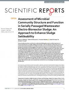 Assessment of Microbial Community Structure and ...