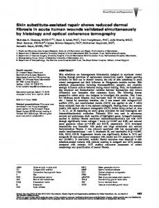 assisted repair shows reduced dermal fibrosis in ... - Wiley Online Library