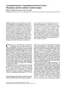 Association between a Transmembrane Protein ... - BioMedSearch
