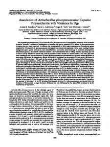 Association of Actinobacillus pleuropneumoniae Capsular ...