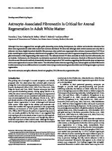 Astrocyte-Associated Fibronectin Is Critical for ... - Semantic Scholar