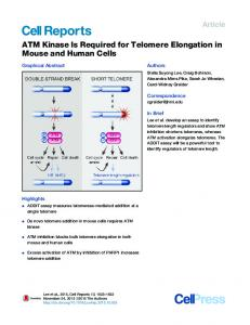 ATM Kinase Is Required for Telomere Elongation in Mouse and ...