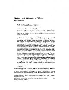 ATP-mediated Phosphorylation - Europe PMC