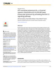 ATP-sensitive potassium (KATP) channel openers