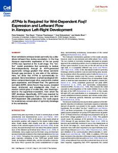 ATP4a Is Required for Wnt-Dependent Foxj1 Expression ... - Cell Press