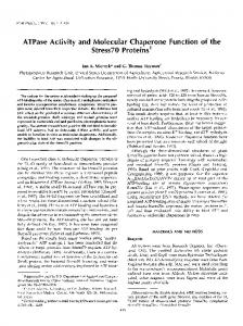 ATPase Activity and Molecular Chaperone Function of the ~tress70 ...