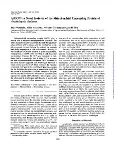 AtUCP2: a Novel Isoform of the Mitochondrial Uncoupling Protein of ...