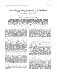 Atypical Polyphosphate Accumulation by the Denitrifying Bacterium ...