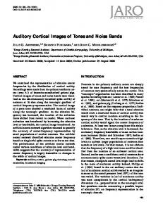 Auditory Cortical Images of Tones and Noise Bands - Springer Link