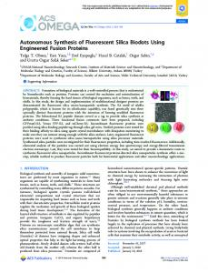 Autonomous Synthesis of Fluorescent Silica ... - ACS Publications